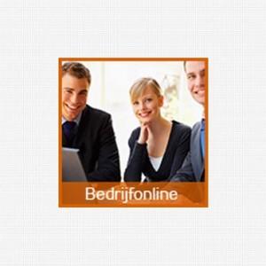 internet-marketing-nederland-bedrijfonline