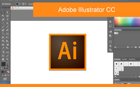 Adobe Illustrator CC cursus