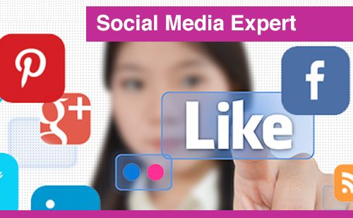 "Social Media Expert cursus + certificaat ""Social Media Expert"""