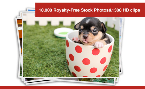 10,000 Royalty-Free High-Impact Stock Photos and 1300 HD clips