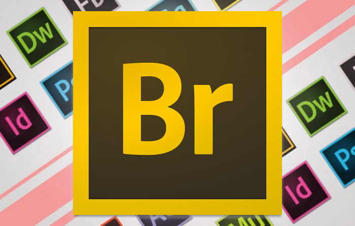 imnl-Adobe-Bridge