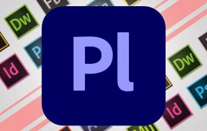 imnl-Adobe-Prelude-2020