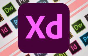 imnl-Adobe-XD-2020